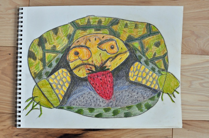 turtle.collab