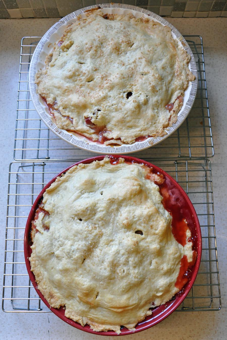 Pie Crust 101 | a life like art