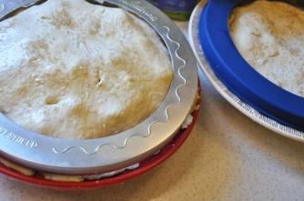 pie.shields